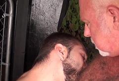 Grey wolf sucking pierced cub and masturbates
